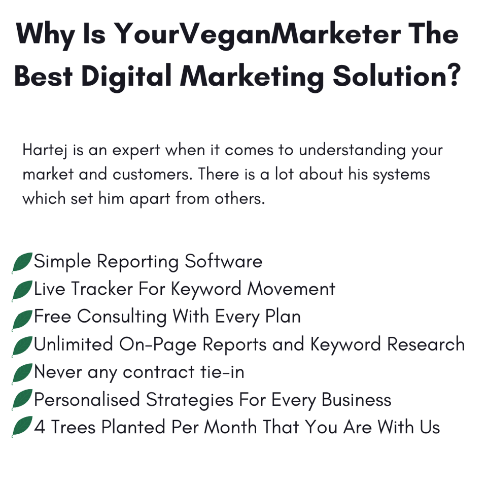 An Introduction to info about vegan digital marketing reviews
